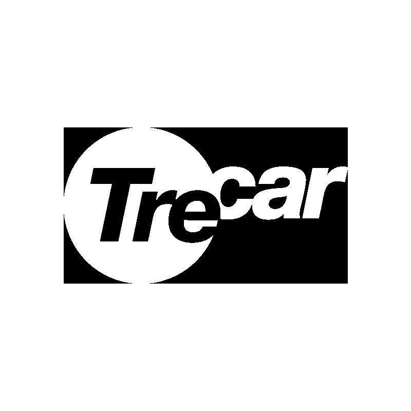 Trecar concessionaria carrelli elevatori